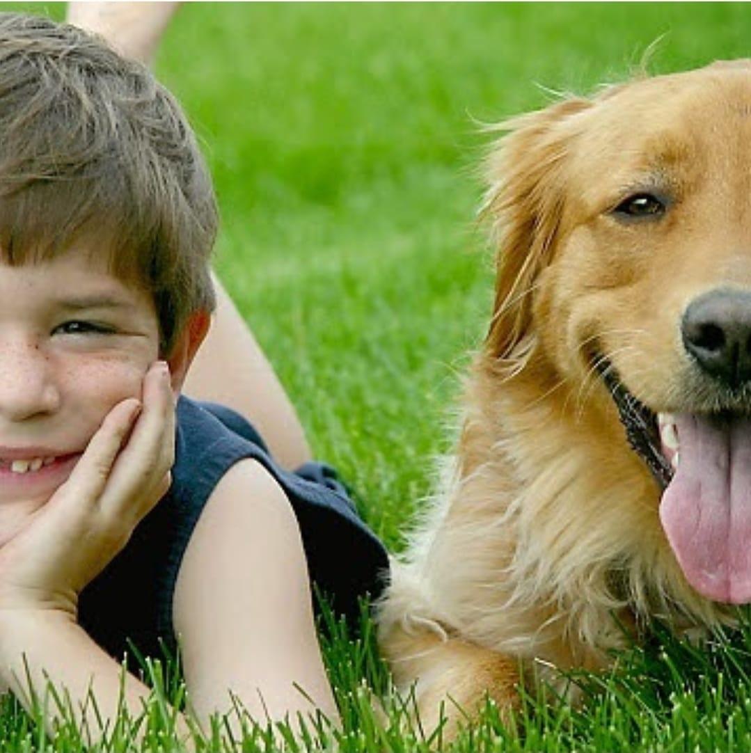 ¿Celebras a tu compi animal el Día del niño?